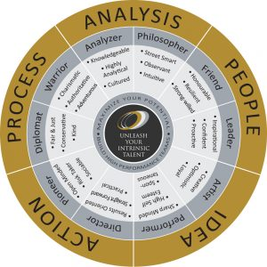 Bazi Career Profile | Believe and Succeed | Bazi Profile